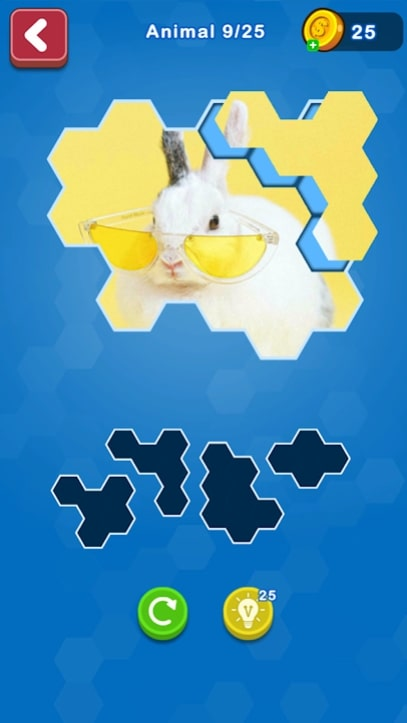 Hexa Puzzle Jigsaw мод