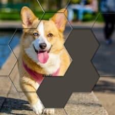Hexa Puzzle Jigsaw взлом